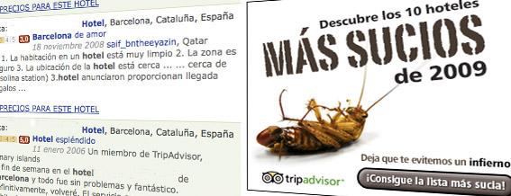 tripadvisorads2.jpg